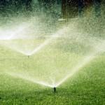 Что такое автоматический полив газонов и зачем он нужен?